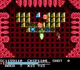 The Guardian Legend NES Soon things get out of control and we find ourselves in an area that looks like a living organism