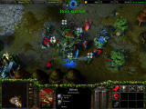 Warcraft III: Reign of Chaos Windows Night elves builds look like a ents