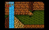 Battletoads Amiga Riding a dragon