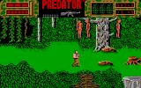 Predator Amiga Three people have been hung to a tree