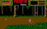 Predator Amiga Somebody is watching you with big, thick, eyes