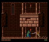 Prince of Persia SNES Fighting a guard in a palace level.