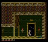 Prince of Persia SNES This is not a door to the next level, it's a teleporter...