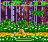 The Wizard of Oz SNES Lost life
