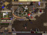 Majesty: The Fantasy Kingdom Sim Windows Sudden attack and good defense