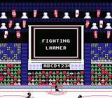Wayne Gretzky Hockey NES Steve Larmer gets a fighting major