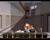 Duke Nukem 3D: Atomic Edition Windows Chaingun works well against LAPD pigs