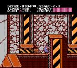 Ninja Gaiden NES On the ladder