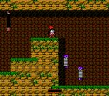 The Krion Conquest NES Ok. I must go down... but how?