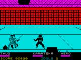 Ninja ZX Spectrum Ho to higher level and fight with two enemies in the same time