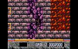 Elvira: The Arcade Game DOS Slowly to down