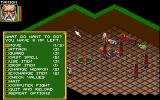 Realms of Arkania: Blade of Destiny Amiga Combat is turn based. Each character has a large menu of options they can perform.