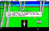 King's Quest Apple IIgs Looking at an inventory item.