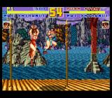 Fatal Fury Special SNES Mirror match