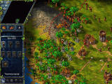 The Settlers III: Quest of the Amazons Windows Build mine