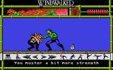 Windwalker Atari ST It seems he is taking my blood and the money