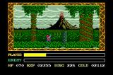 Ys III: Wanderers from Ys TurboGrafx CD Lovely view with a volcano