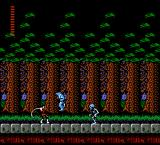 Castlevania II: Simon's Quest NES Wolf and skeleton