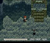 Ys V: Ushinawareta Suna no Miyako Kefin SNES Another cave dungeon, this time with bats