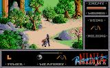The Last Ninja Atari ST Wilderness