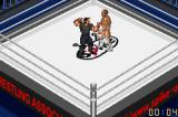 Fire Pro Wrestling Game Boy Advance Punch in face!