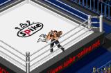 Fire Pro Wrestling Game Boy Advance Typical wrestling scene