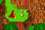 Banjo-Kazooie: Grunty's Revenge Game Boy Advance Ladder