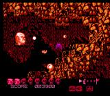 Zombie Nation NES Must destroy wall