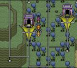 Paladin's Quest SNES Takeoff from the bird village