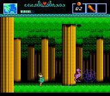 The Battle of Olympus NES Those pesky birds jump like crazy