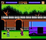 Lethal Weapon NES Boss of the Gardens