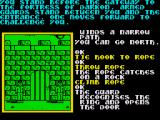 Souls of Darkon ZX Spectrum The ring you found in the nest fools Darkon's guards.