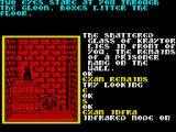 Souls of Darkon ZX Spectrum Infrared is needed to see in this room.