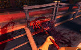 Shadow Warrior Windows Viscera Cleanup Detail: Shadow Warrior - There is so much to clean up.