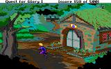Hero's Quest: So You Want To Be A Hero DOS ...the healer's hut...