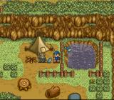 Harvest Moon SNES Want seafood? (er...pond food?) Visit your local pond and fish the day away! If your lucky.