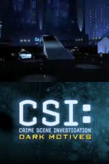 CSI: Crime Scene Investigation - Dark Motives Nintendo DS Arriving at the crime scene.