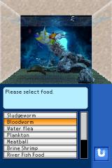 Aquarium by DS Nintendo DS Different food type will attract different type of fish.