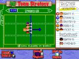 Backyard Football Windows The strategy.