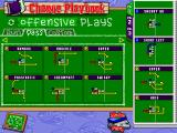 Backyard Football Windows You can customize your playbook if you want to.
