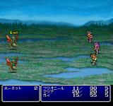 Final Fantasy II PlayStation Birds do it, bees do it. In a swamp