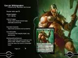 Magic: The Gathering - Duels of the Planeswalkers 2013 iPad Planeswalker profile