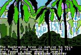 The Spy's Adventures in South America Apple II Uruguay woodlands (standard hi-res)