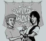 Bill & Ted's Excellent Game Boy Adventure Game Boy Wild stalyns