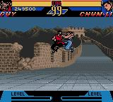 Street Fighter Alpha: Warriors' Dreams Game Boy Color Air Duel