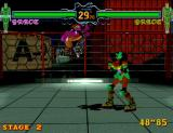 Fighting Vipers Arcade Mirror match