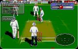 Allan Border's Cricket Amiga The batting screen