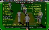 Allan Border's Cricket Amiga The scorecard