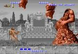 Altered Beast Arcade End of level boss.