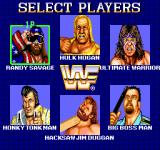 WWF SuperStars Arcade Select your players.